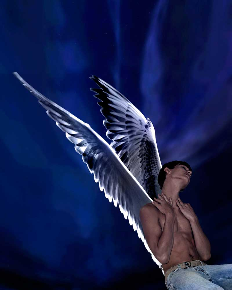 Fly Blackbird, Fly   - Gay Art Male Art by Michael Taggart Photography